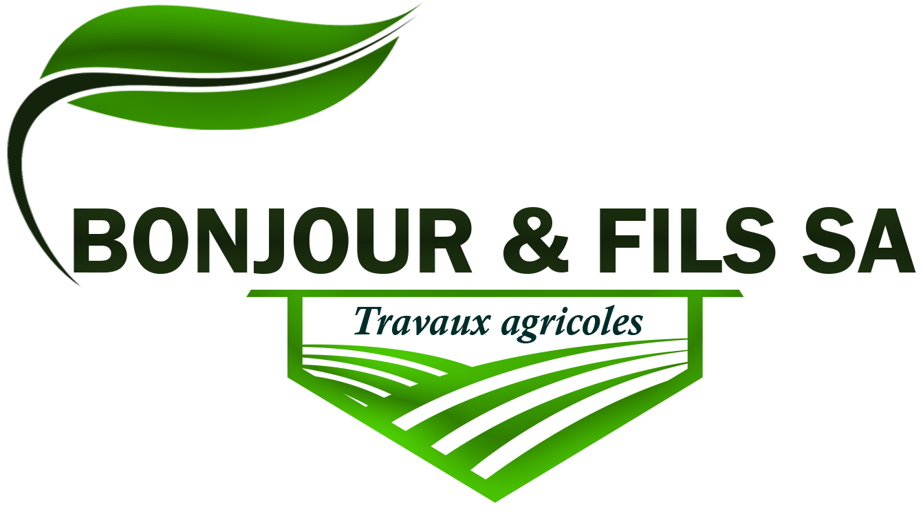 logo Bonjour & FILS SA